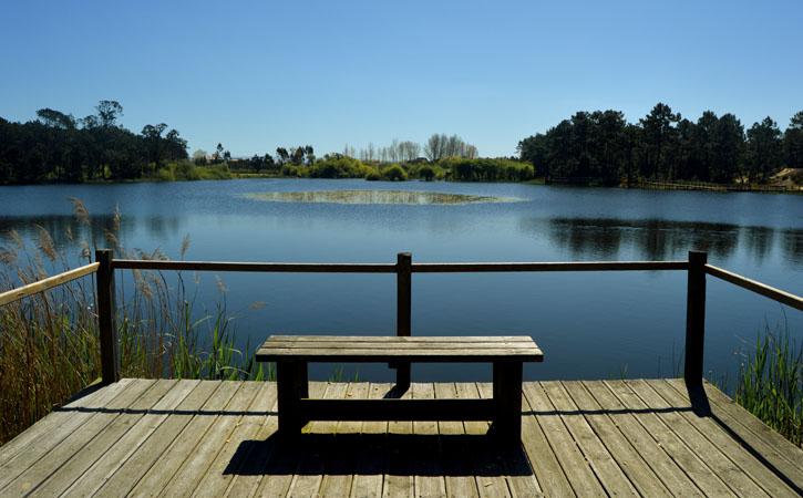 Lagoa de Pataias banco de observação nos Passadiços em Alcobaça