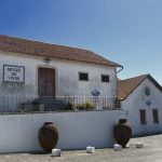 Wine Museum Alcobaça
