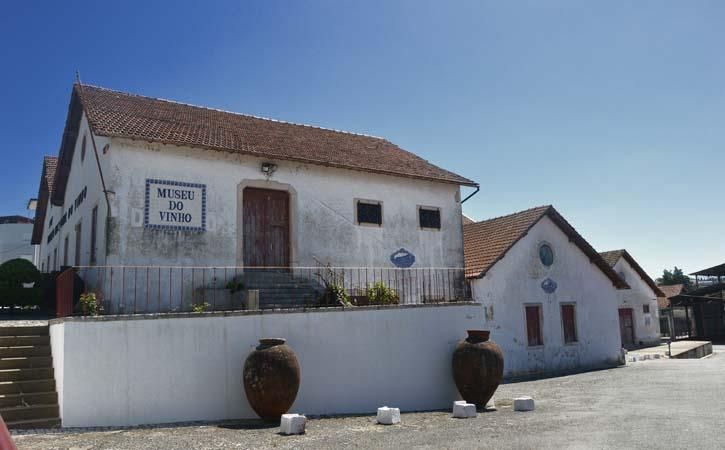 Wine Museum of Alcobaça